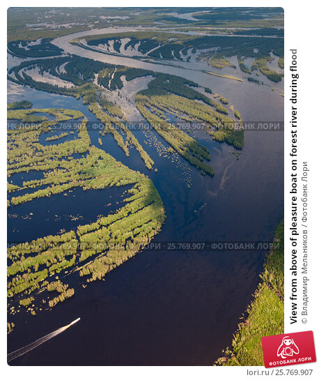 View from above of pleasure boat on forest river during flood, фото № 25769907, снято 19 июня 2015 г. (c) Владимир Мельников / Фотобанк Лори