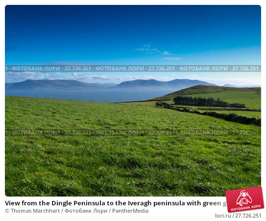 Купить «View from the Dingle Peninsula to the Iveragh peninsula with green grass, a blue ridge and a clear blue sky.», фото № 27726251, снято 25 апреля 2019 г. (c) PantherMedia / Фотобанк Лори