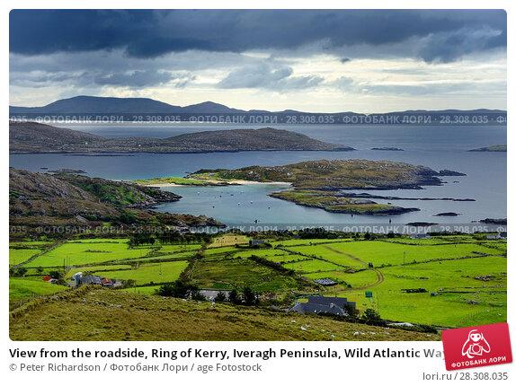 Купить «View from the roadside, Ring of Kerry, Iveragh Peninsula, Wild Atlantic Way, County Cork, Munster, Republic of Ireland, Europe», фото № 28308035, снято 16 сентября 2017 г. (c) age Fotostock / Фотобанк Лори