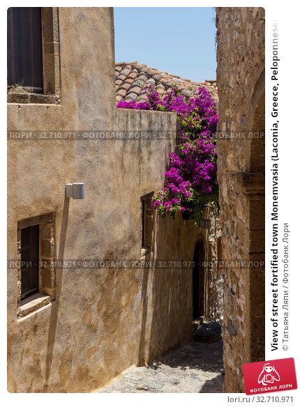 Купить «View of street fortified town Monemvasia (Laconia, Greece, Peloponnese)», фото № 32710971, снято 15 июня 2019 г. (c) Татьяна Ляпи / Фотобанк Лори