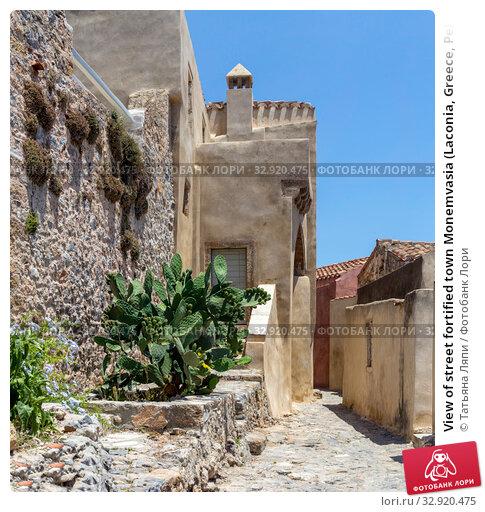 Купить «View of street fortified town Monemvasia (Laconia, Greece, Peloponnese)», фото № 32920475, снято 15 июня 2019 г. (c) Татьяна Ляпи / Фотобанк Лори