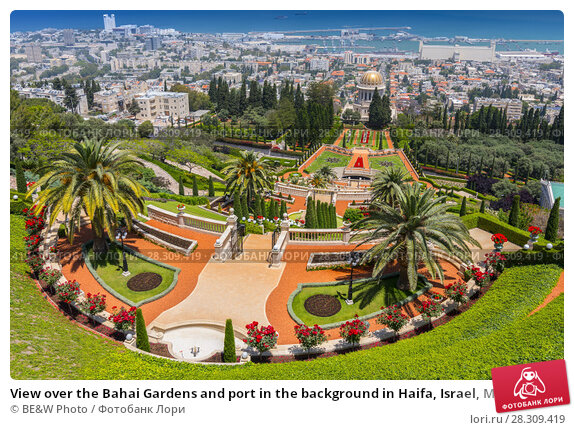 Купить «View over the Bahai Gardens and port in the background in Haifa, Israel, Middle East», фото № 28309419, снято 17 декабря 2018 г. (c) BE&W Photo / Фотобанк Лори