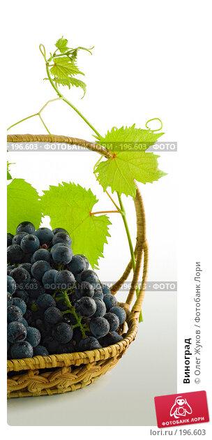 Купить «Виноград», фото № 196603, снято 4 сентября 2007 г. (c) Олег Жуков / Фотобанк Лори