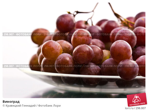 Виноград, фото № 298007, снято 13 сентября 2005 г. (c) Кравецкий Геннадий / Фотобанк Лори