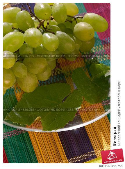 Купить «Виноград», фото № 336755, снято 6 сентября 2004 г. (c) Кравецкий Геннадий / Фотобанк Лори
