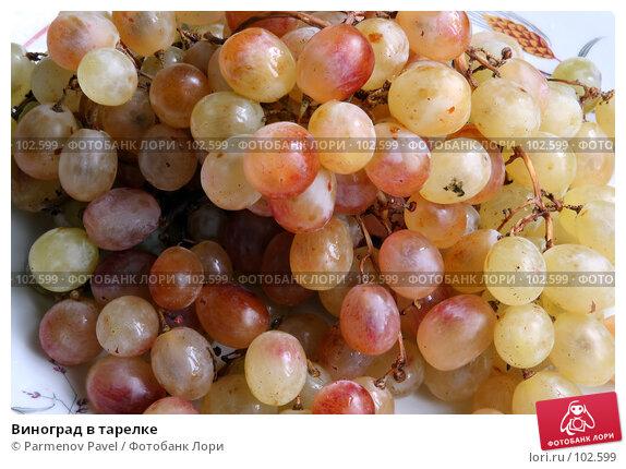 Купить «Виноград в тарелке», фото № 102599, снято 19 апреля 2018 г. (c) Parmenov Pavel / Фотобанк Лори