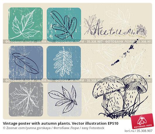 Vintage poster with autumn plants. Vector illustration EPS10. Стоковое фото, фотограф Zoonar.com/yunna gorskaya / easy Fotostock / Фотобанк Лори