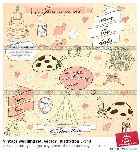 Vintage wedding set. Vector illustration EPS10. Стоковое фото, фотограф Zoonar.com/yunna gorskaya / easy Fotostock / Фотобанк Лори