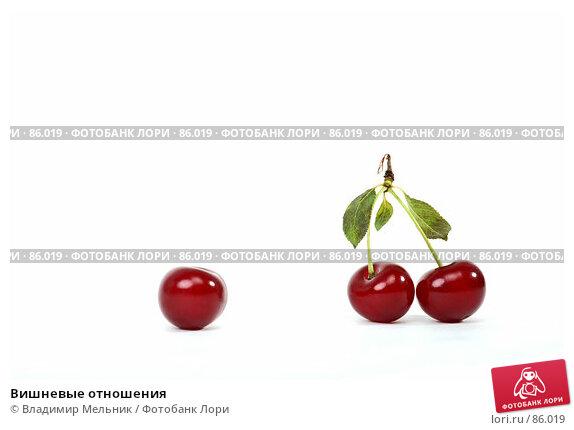 Вишневые отношения, фото № 86019, снято 17 июля 2007 г. (c) Владимир Мельник / Фотобанк Лори