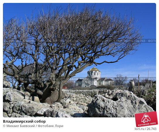 Владимирский собор, фото № 26743, снято 25 марта 2006 г. (c) Михаил Баевский / Фотобанк Лори