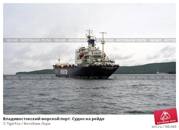 Владивостокский морской порт. Судно на рейде, фото № 100043, снято 25 сентября 2017 г. (c) TigerFox / Фотобанк Лори