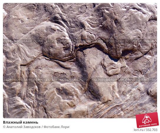 Влажный камень, фото № 332703, снято 19 сентября 2007 г. (c) Анатолий Заводсков / Фотобанк Лори
