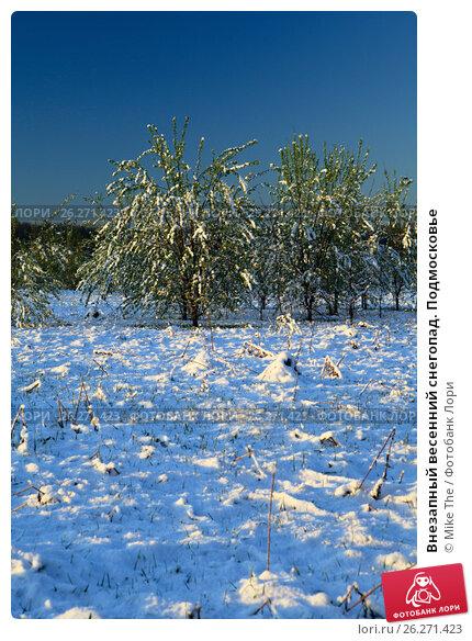Купить «Внезапный весенний снегопад. Подмосковье», фото № 26271423, снято 12 мая 2017 г. (c) Mike The / Фотобанк Лори
