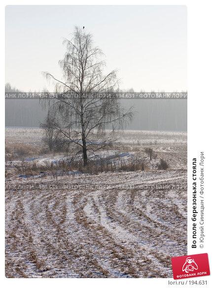 Купить «Во поле березонька стояла», фото № 194631, снято 8 января 2008 г. (c) Юрий Синицын / Фотобанк Лори