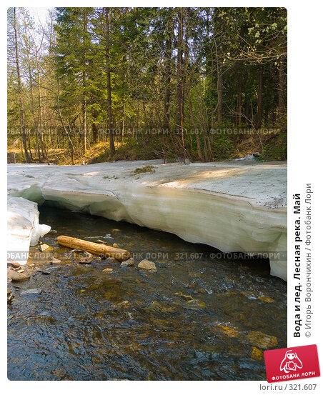 Купить «Вода и лед. Лесная река. Май», фото № 321607, снято 13 мая 2008 г. (c) Игорь Ворончихин / Фотобанк Лори