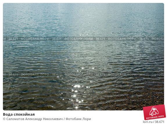 Вода спокойная, фото № 38671, снято 24 мая 2005 г. (c) Саломатов Александр Николаевич / Фотобанк Лори