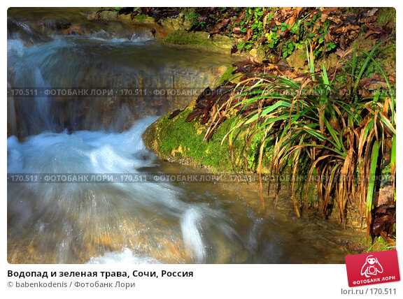 Водопад и зеленая трава, Сочи, Россия, фото № 170511, снято 5 января 2007 г. (c) Бабенко Денис Юрьевич / Фотобанк Лори