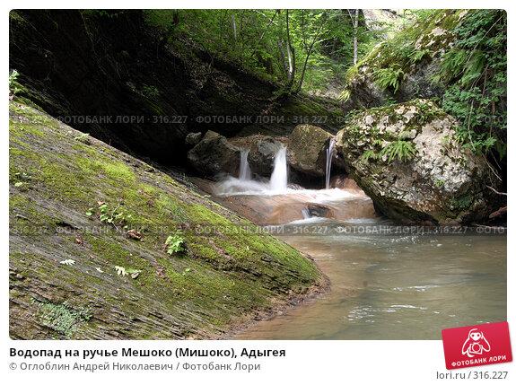 Водопад на ручье Мешоко (Мишоко), Адыгея, фото № 316227, снято 8 июня 2008 г. (c) Оглоблин Андрей Николаевич / Фотобанк Лори