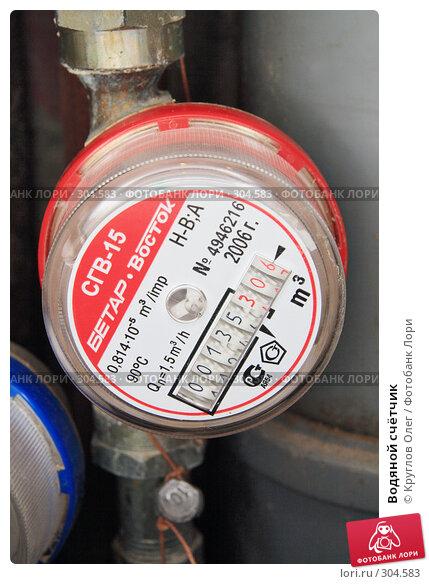 Водяной счётчик, фото № 304583, снято 27 мая 2008 г. (c) Круглов Олег / Фотобанк Лори