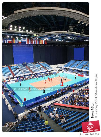 Волейбол, фото № 260639, снято 25 октября 2016 г. (c) Losevsky Pavel / Фотобанк Лори