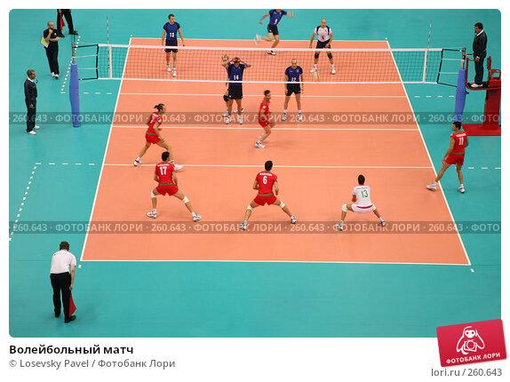 Волейбольный матч, фото № 260643, снято 28 апреля 2017 г. (c) Losevsky Pavel / Фотобанк Лори