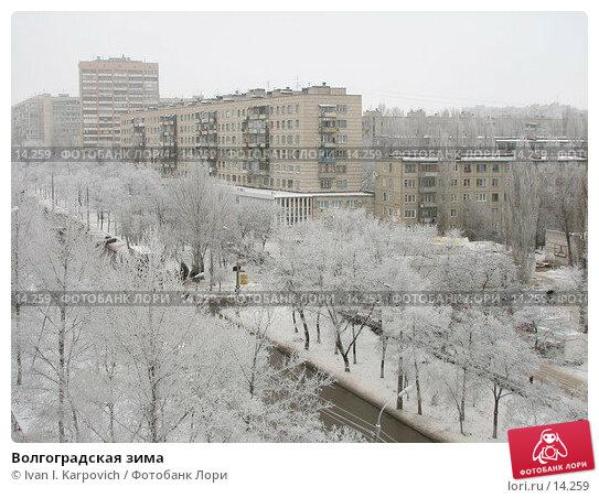 Волгоградская зима, фото № 14259, снято 28 декабря 2005 г. (c) Ivan I. Karpovich / Фотобанк Лори