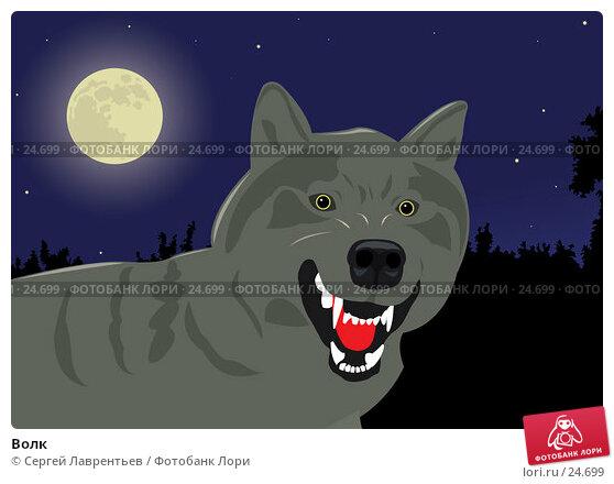 Волк, иллюстрация № 24699 (c) Сергей Лаврентьев / Фотобанк Лори