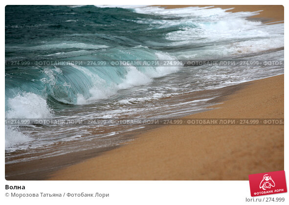 Волна, фото № 274999, снято 17 апреля 2008 г. (c) Морозова Татьяна / Фотобанк Лори