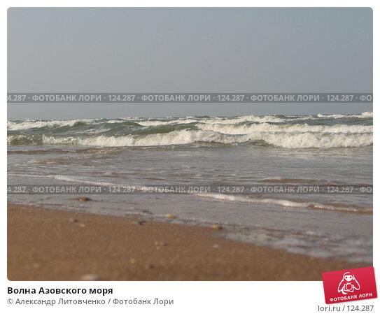 Волна Азовского моря, фото № 124287, снято 5 сентября 2007 г. (c) Александр Литовченко / Фотобанк Лори