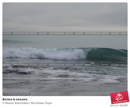 Волна в океане, фото № 26647, снято 24 марта 2007 г. (c) Maxim Kamchatka / Фотобанк Лори