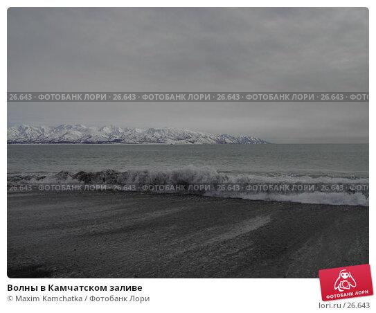 Волны в Камчатском заливе, фото № 26643, снято 24 марта 2007 г. (c) Maxim Kamchatka / Фотобанк Лори