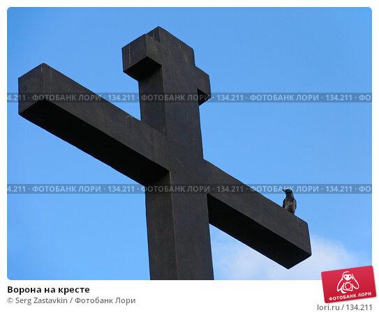 Ворона на кресте, фото № 134211, снято 7 июня 2005 г. (c) Serg Zastavkin / Фотобанк Лори
