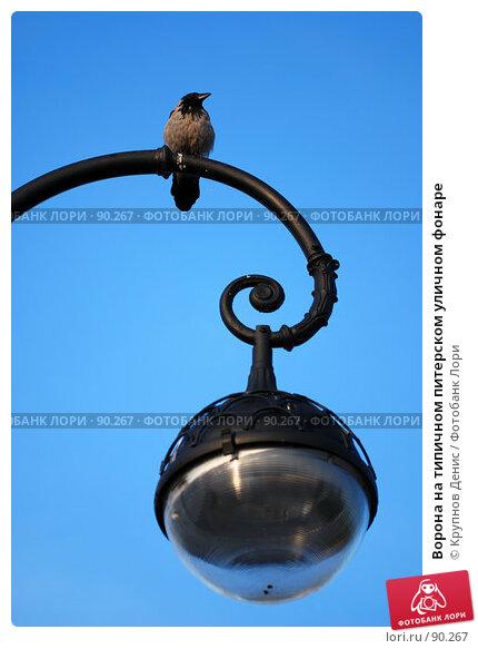 Ворона на типичном питерском уличном фонаре, фото № 90267, снято 30 июля 2007 г. (c) Крупнов Денис / Фотобанк Лори