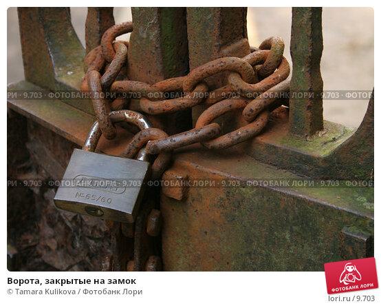 Купить «Ворота, закрытые на замок», фото № 9703, снято 23 сентября 2006 г. (c) Tamara Kulikova / Фотобанк Лори