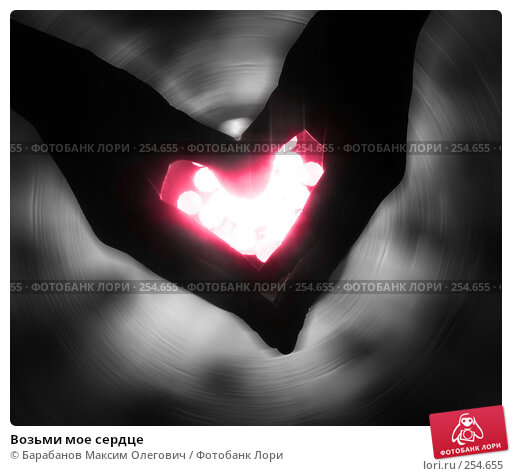 Купить «Возьми мое сердце», фото № 254655, снято 22 октября 2007 г. (c) Барабанов Максим Олегович / Фотобанк Лори