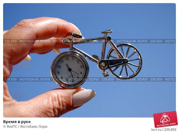 Купить «Время в руке», фото № 239859, снято 29 марта 2008 г. (c) RedTC / Фотобанк Лори