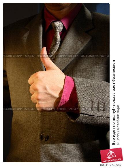 Все идет по плану! - показывает бизнесмен, фото № 59547, снято 21 июня 2005 г. (c) Harry / Фотобанк Лори