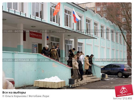 Все на выборы, эксклюзивное фото № 212855, снято 23 февраля 2017 г. (c) Ольга Хорькова / Фотобанк Лори