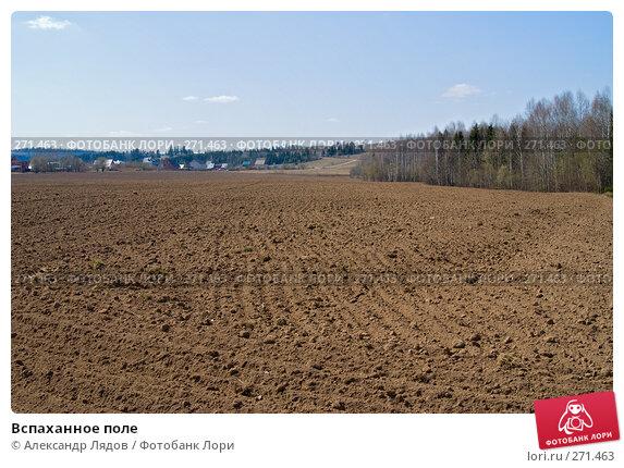 Вспаханное поле, фото № 271463, снято 3 мая 2008 г. (c) Александр Лядов / Фотобанк Лори