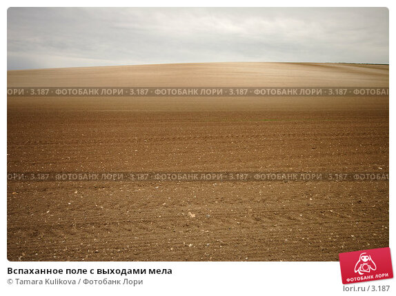 Вспаханное поле с выходами мела, фото № 3187, снято 6 мая 2006 г. (c) Tamara Kulikova / Фотобанк Лори