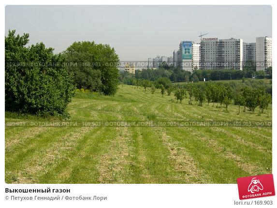 Выкошенный газон, фото № 169903, снято 29 мая 2007 г. (c) Петухов Геннадий / Фотобанк Лори