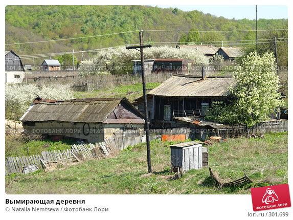 Вымирающая деревня, эксклюзивное фото № 301699, снято 3 мая 2008 г. (c) Natalia Nemtseva / Фотобанк Лори
