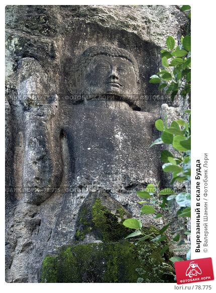 Вырезанный в скале Будда, фото № 78775, снято 7 июня 2007 г. (c) Валерий Шанин / Фотобанк Лори