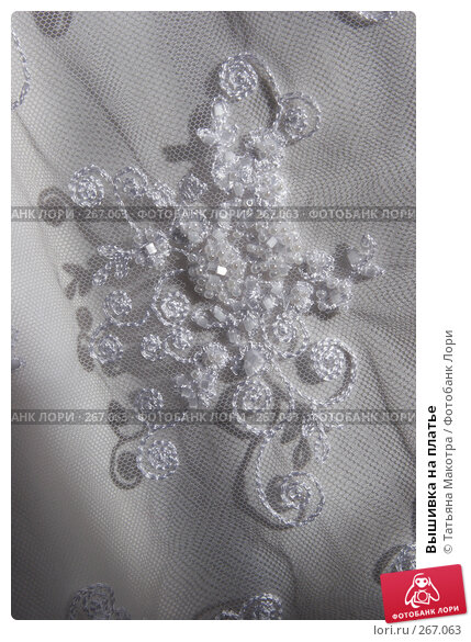 Вышивка на платье, фото № 267063, снято 6 марта 2008 г. (c) Татьяна Макотра / Фотобанк Лори