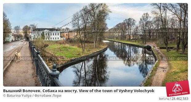 Купить «Вышний Волочек. Собака на мосту. View of the town of Vyshny Volochyok», фото № 28462583, снято 1 мая 2018 г. (c) Baturina Yuliya / Фотобанк Лори
