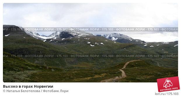 Высоко в горах Норвегии, фото № 175103, снято 22 февраля 2017 г. (c) Наталья Белотелова / Фотобанк Лори