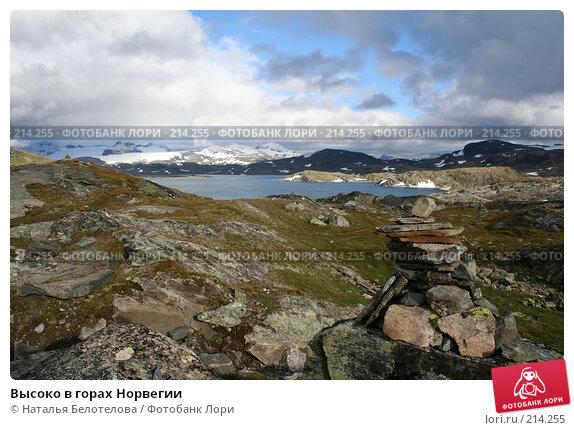 Высоко в горах Норвегии, фото № 214255, снято 28 августа 2007 г. (c) Наталья Белотелова / Фотобанк Лори
