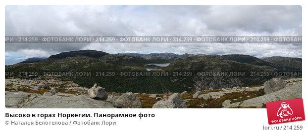 Купить «Высоко в горах Норвегии. Панорамное фото», фото № 214259, снято 22 апреля 2018 г. (c) Наталья Белотелова / Фотобанк Лори