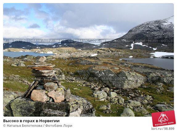 Высоко в горах в Норвегии, фото № 98899, снято 28 августа 2007 г. (c) Наталья Белотелова / Фотобанк Лори
