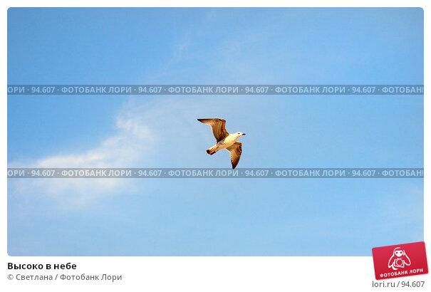 Купить «Высоко в небе», фото № 94607, снято 30 августа 2007 г. (c) Светлана / Фотобанк Лори